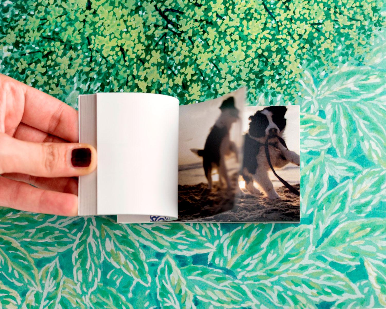 Flipbook libro personalizzato con cane che gioca in spiaggia al tramonto